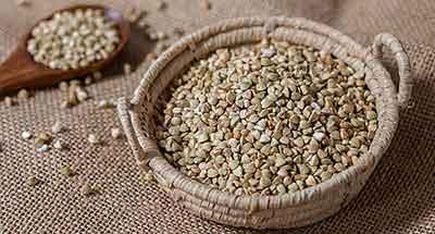 Il grano saraceno è un finto cereale, perché è una pianta e non appartiene alla famiglia delle graminacee. Senza glutine, è ideale per la dieta dei celiaci
