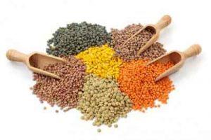lenticchie varieta