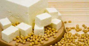 tofu soia