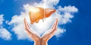 fegato ingrossato cura