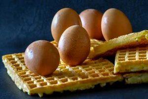 salmonella uova