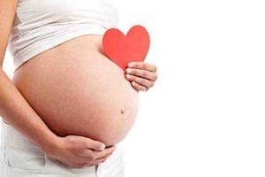 cefixoral gravidanza