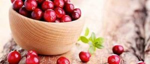 cranberry integratore
