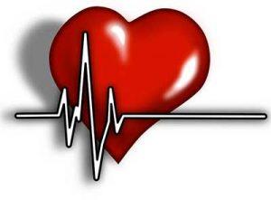 cardicor aritmia