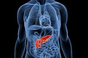 deursil pancreas